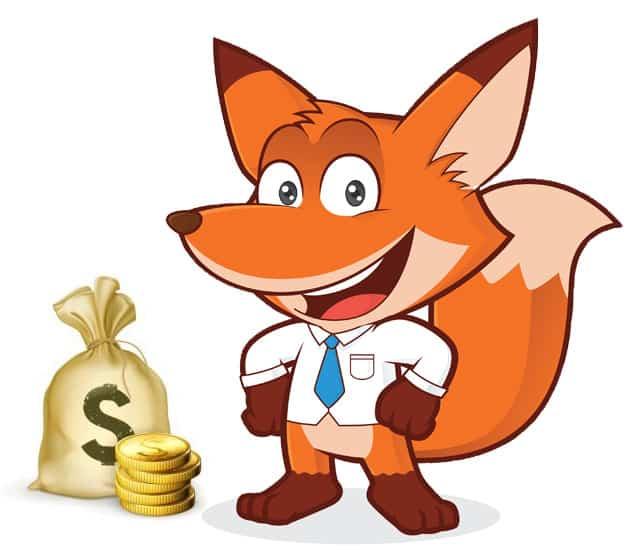 Fuchs zieht Fazit zum Thema Geld verdienen